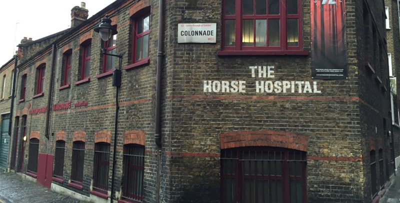the-horse-hospital