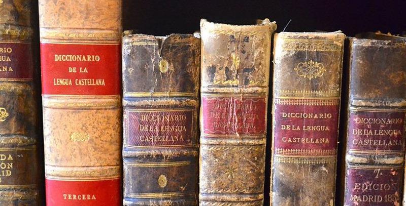 diccionarios lengua castellana