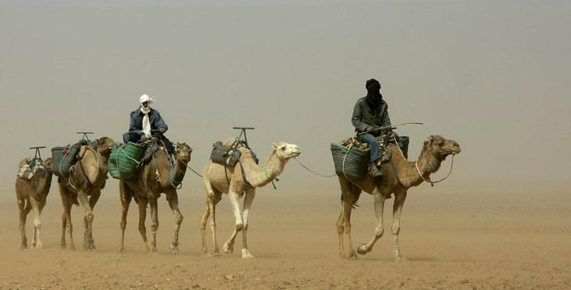 nomadas del desierto
